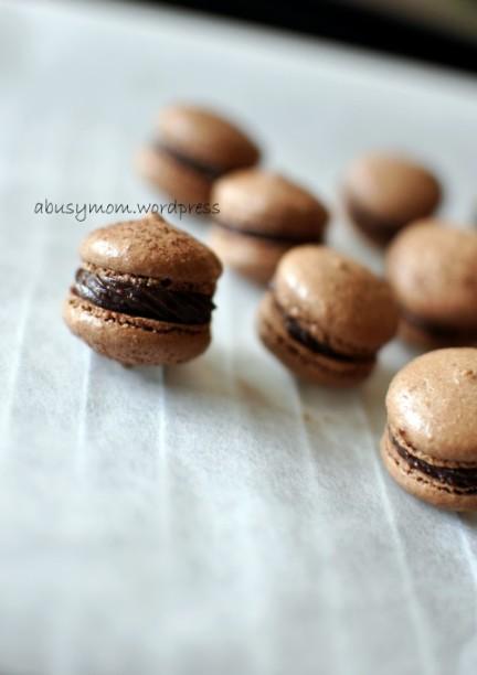 Chocolate Macaron 05