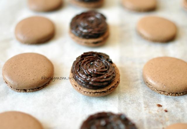 Chocolate Macaron 04