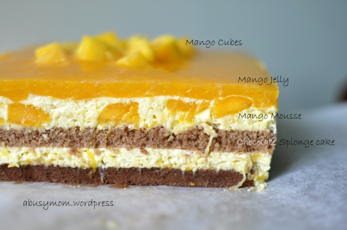 Mango Mousse Cake_layer_labels_watermarked